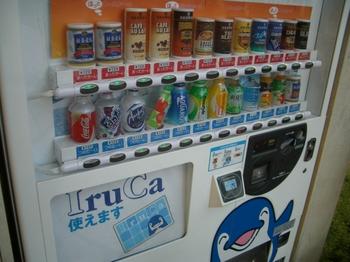 IruCa対応自販機.jpg